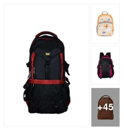 COLOURFUL  BACKPACKS  FOR GENTS. Online shopping look by india