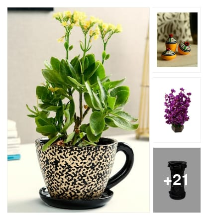 DECORATIVE  VASES;FLOWERS FOR NICE HOME. Online shopping look by harika