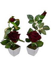 Set Of 2 Piece Artifical Rose Plants With Pots Style - By