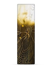 """Spider On Web"" National Geographic 3D Bookmark - That Company Called IF By Mufubu"