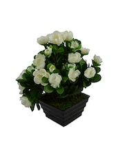 Artificial Dry Rose Bush With Pot - By