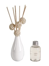 Natural Reed Diffuser (100 Ml) - Fennel