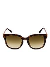 Grey Wayfarer Sunglasses - By