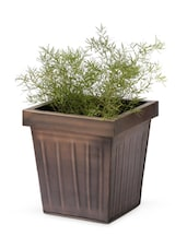 Iron Square Shape Planter - Magnolia Kreations
