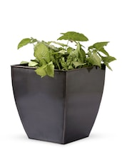 Frustum Shape Solid Color Planter - Magnolia Kreations