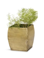 Frustum Square Base Brass Planter - Magnolia Kreations