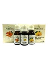 OrganoVeda Citrus Combo: Orange + Lemon + Lemon Eucalyptus Essential Oils (15 Ml Each) - By