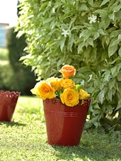 Red Cup Planters (Set Of 3) - By