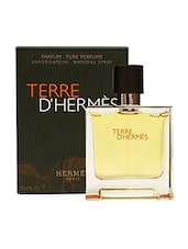 Hermes Terre D' Hermes EDP  -  75 ml -  online shopping for Perfumes
