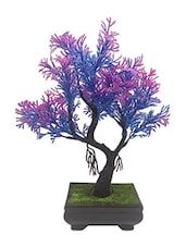 Random Y Shaped Bonsai Tree with Blue and Purple Leaves -  online shopping for Indoor Plants