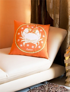 Cancer Cushion Cover - HOUSE THIS