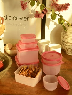 Container Set With Lids- Set Of 15 - TRUST And GUESS