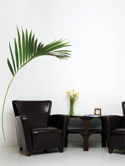 Breezy Palm Leaf Wall Sticker - Freelance