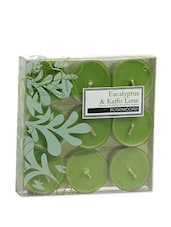 Eucalyptus & Kaffir Lime Scented Tea Lights - Rosemoore