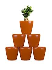 Pack Of 6 Orange Planters - Yuccabe Italia