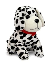 Cute Puppy Soft Toy - Gifts By Meeta