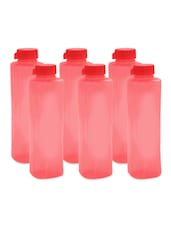 Red Polypropylene Water Bottle Set Of  6 - Cello