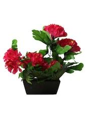 Soulful Elegance - Elegant Vase With Pretty Pink Flowers - Flower N Décor