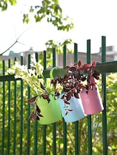 Multicoloured Cup Planters (Set Of 3) - By