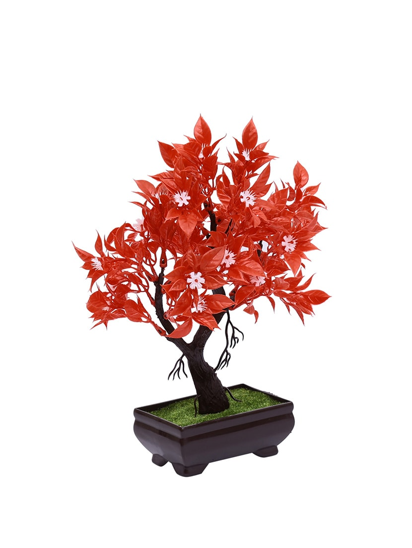 Buy Random Y Shaped Bonsai Tree With Red Leaves And White Flwers By