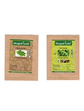 Shagun Gold 100% Natural Neem Leaves And Tulsi Powder (Pack Of 2) 100Gm - By