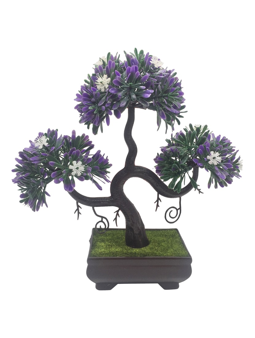 Buy random s shaped bonsai tree with purple leaves and white flowers buy random s shaped bonsai tree with purple leaves and white flowers by random flowers online shopping for indoor plants in india 14164241 mightylinksfo