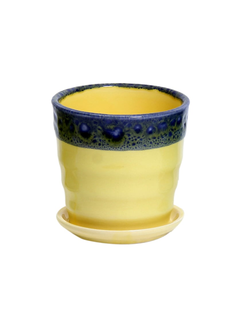 Buy Yellow Cup Saucer Style Planter Pot By Tayhaa Online