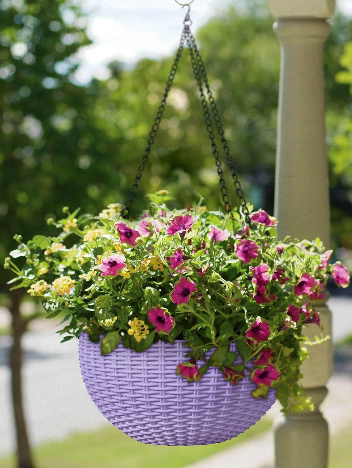 Buy Round Rattan Woven Plastic Flower Pot Garden Plant Chain Hanging Pot With 1 Pc Chain for Unisex from Story@home for \u20b9414 at 54% off | 2019 Limeroad.com & Buy Round Rattan Woven Plastic Flower Pot Garden Plant Chain Hanging ...