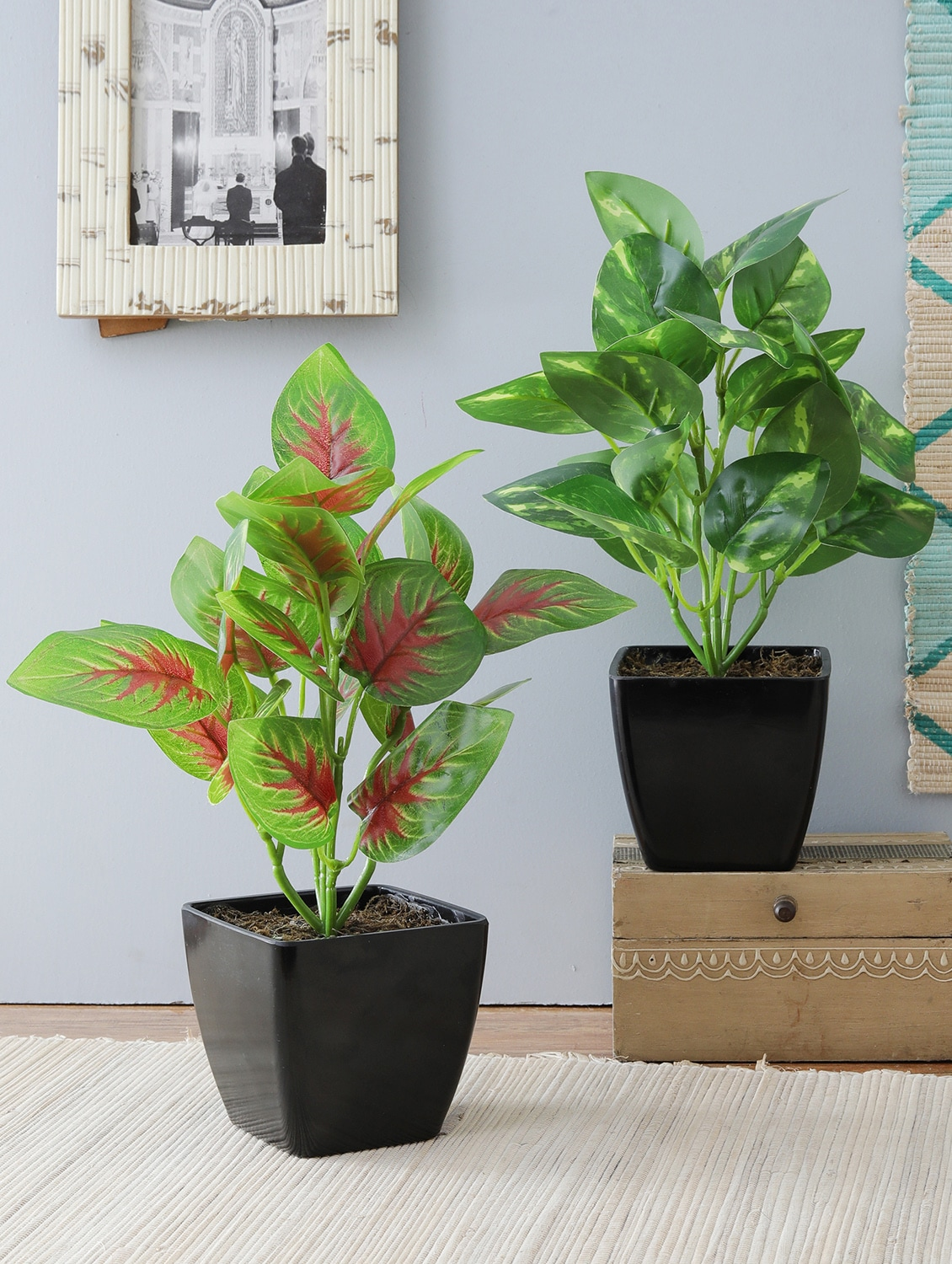 Buy Artificial Plants With Pot Combo Of 2 For Home Dcor And Living Room