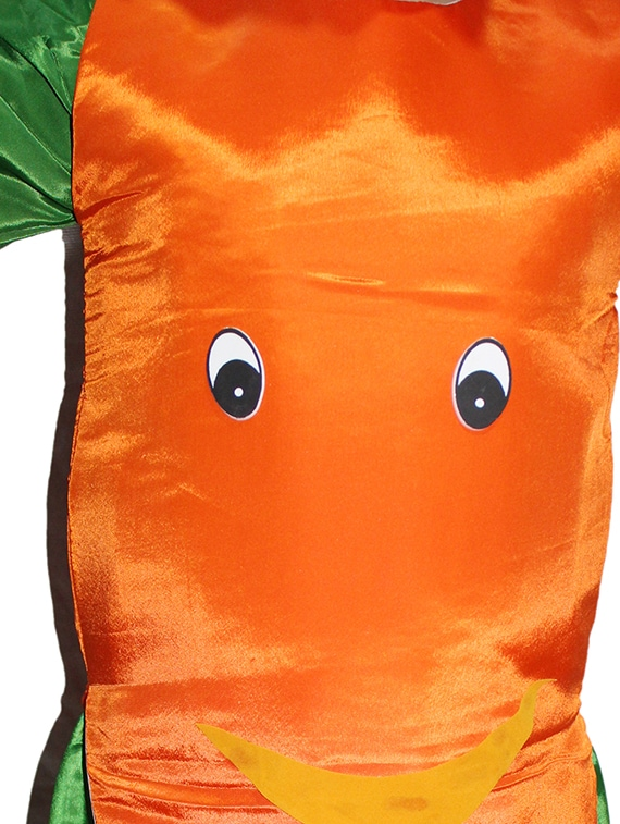 d43f98cf589a Buy Orange Polyester Carrot Costume for Women from Kaku Fancy Dresses for  ₹407 at 49% off   2019 Limeroad.com