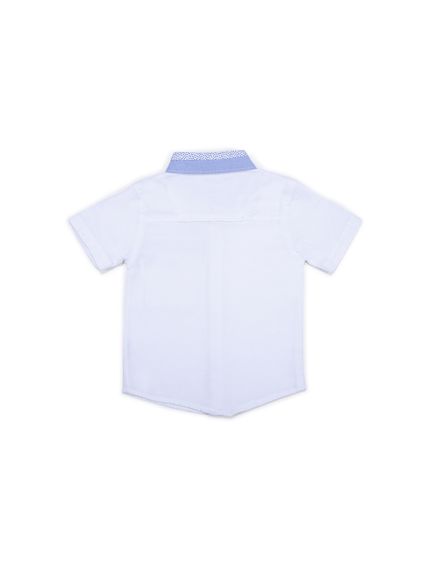 0ee07fed Buy White Cotton Blend Shirt for Women from Terry Fator for ₹492 at 40% off  | 2019 Limeroad.com