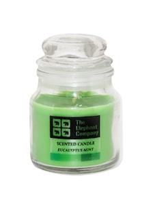 Yankee Jar Eucalyptus Mint - The Elephant Company